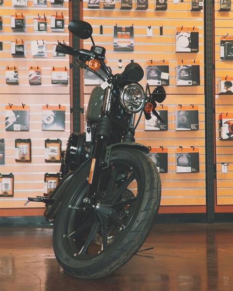 2021 Harley-Davidson XL883N in Mount Vernon, Illinois - Photo 11