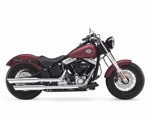 2017 Harley-Davidson FLS in Black River Falls, Wisconsin