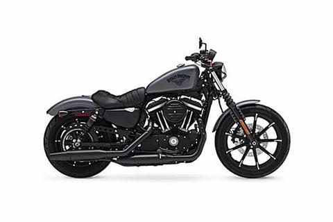 2017 Harley-Davidson XL883N in Black River Falls, Wisconsin