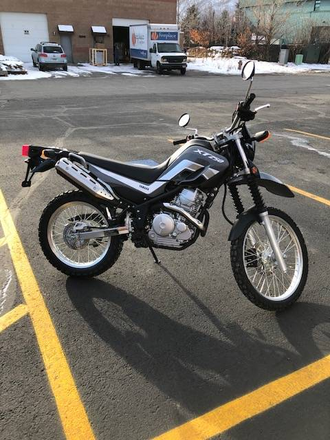 2021 Yamaha XT250 in Hailey, Idaho - Photo 3