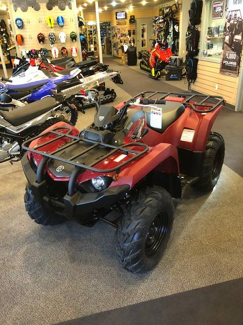 2021 Yamaha Kodiak 450 in Hailey, Idaho - Photo 2