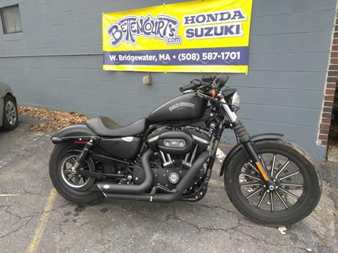 2015 Harley-Davidson Iron 883™ in West Bridgewater, Massachusetts