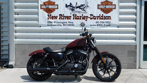2017 Harley-Davidson Iron 883™ in Jacksonville, North Carolina - Photo 1