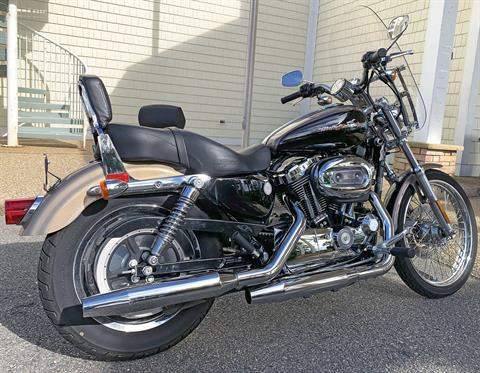 2004 Harley-Davidson Sportster® 1200 Custom in Jacksonville, North Carolina - Photo 6