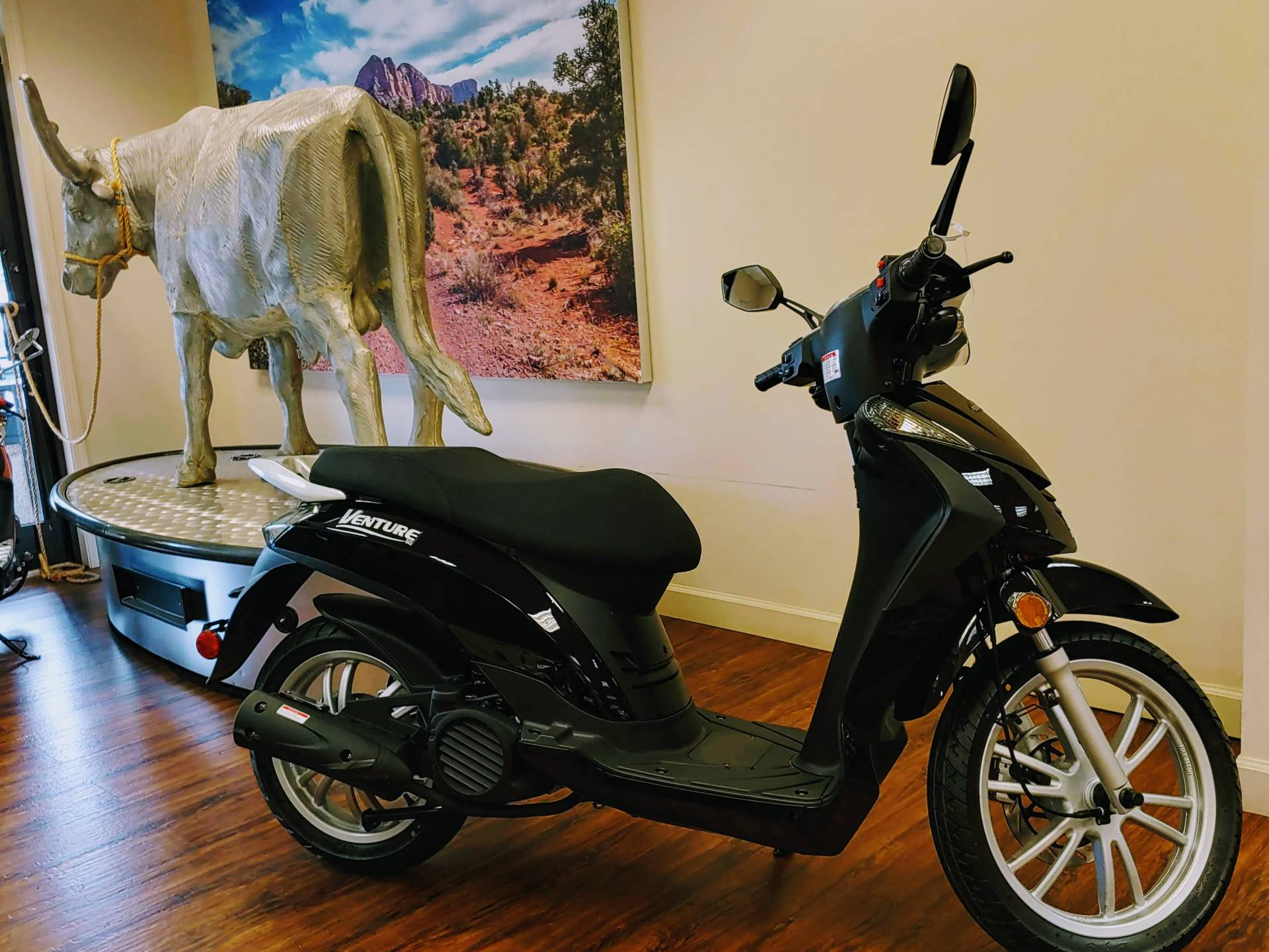 2019 Genuine Scooters Venture 50 in Statesville, North Carolina - Photo 1