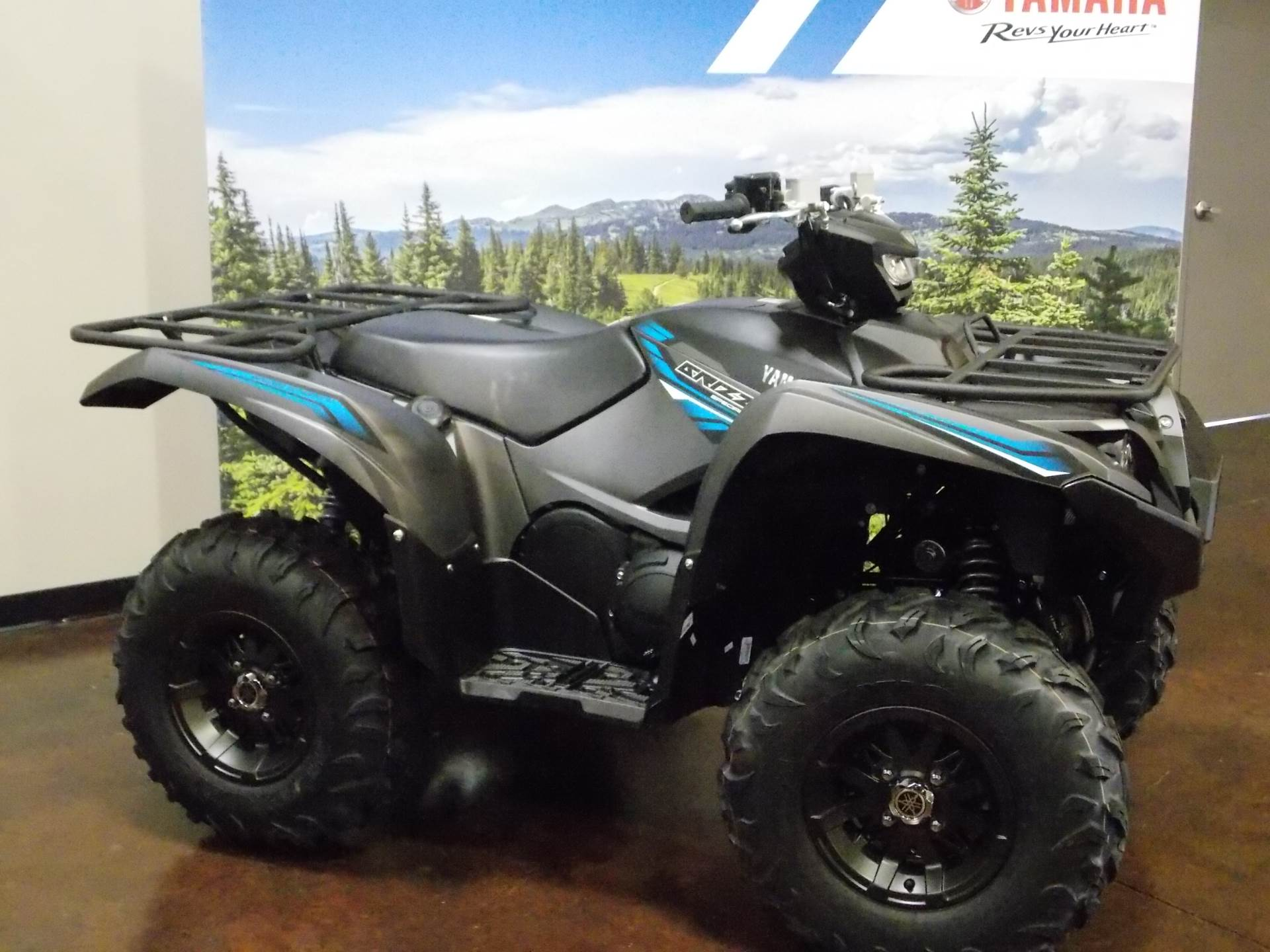 New 2018 Yamaha Grizzly EPS SE ATVs in Statesville, NC | Stock ...