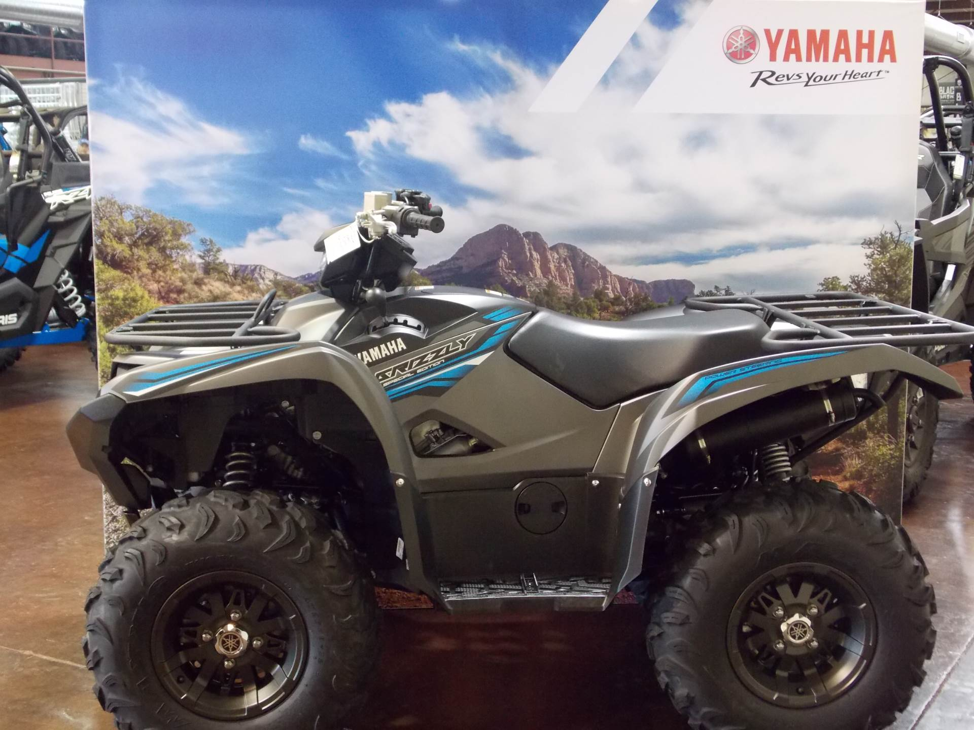 2018 Yamaha Grizzly EPS SE in Statesville, North Carolina