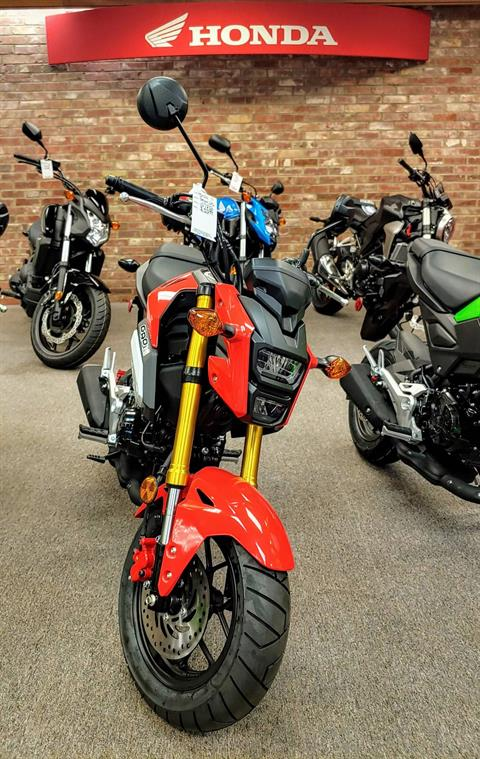 2019 Honda Grom in Statesville, North Carolina - Photo 6
