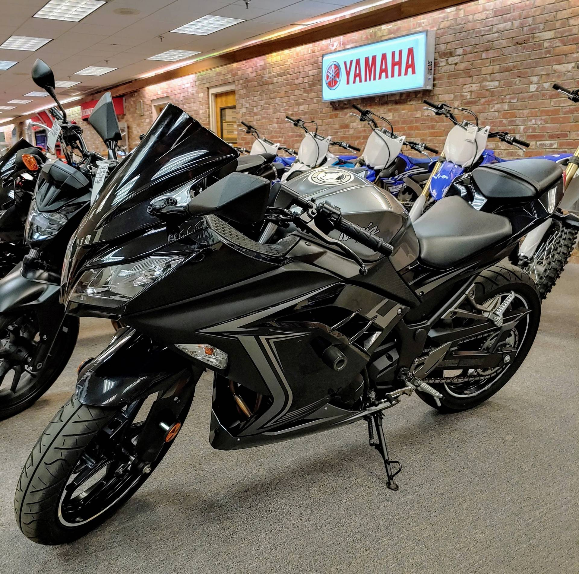 2015 Kawasaki Ninja® 300 SE in Statesville, North Carolina - Photo 8