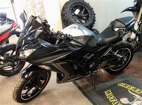 2015 Kawasaki Ninja® 300 SE in Statesville, North Carolina