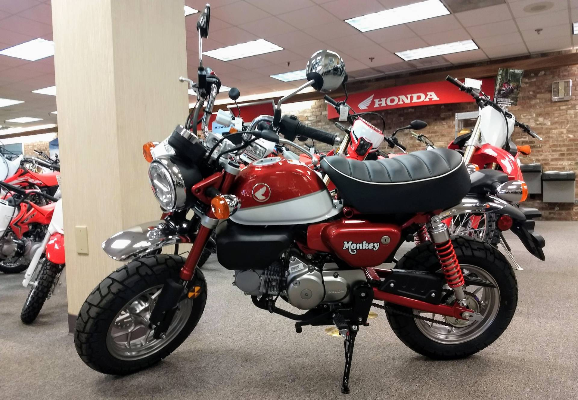 New 2019 Honda Monkey Motorcycles In Statesville Nc Stock Number