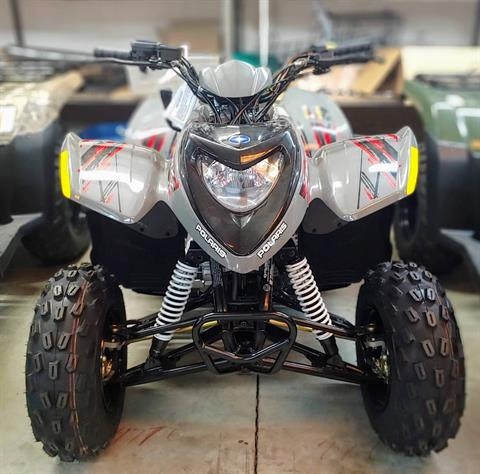 2019 Polaris Phoenix 200 in Statesville, North Carolina - Photo 2