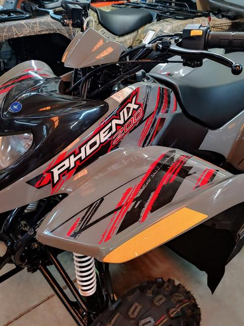 2019 Polaris Phoenix 200 in Statesville, North Carolina - Photo 7