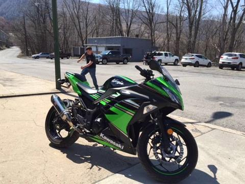 2017 Kawasaki NINJA 300 ABS KRT EDITION in Palmerton, Pennsylvania