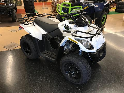 2018 Textron Off Road Alterra 150 in Sanford, North Carolina - Photo 2