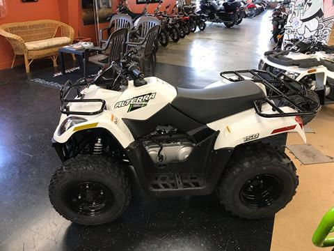 2018 Textron Off Road Alterra 150 in Sanford, North Carolina - Photo 5