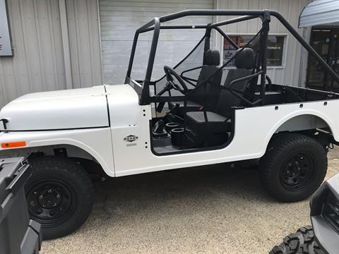 2019 Mahindra Automotive North America ROXOR Offroad in Sanford, North Carolina - Photo 5