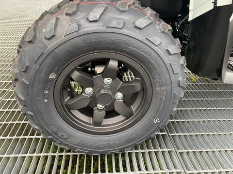 2021 Kawasaki Brute Force 750 4x4i EPS in Orlando, Florida - Photo 5