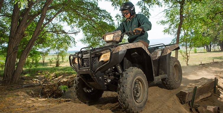 2017 Honda FourTrax Foreman 4x4 in Asheville, North Carolina