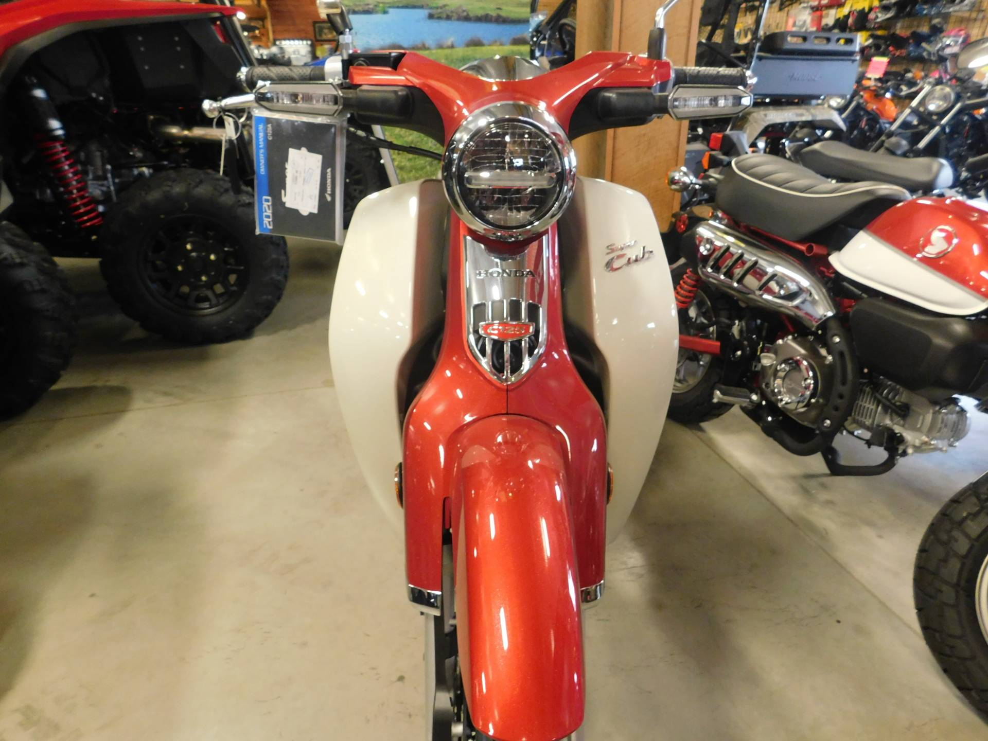 2020 Honda Super Cub C125 ABS in Sauk Rapids, Minnesota - Photo 3