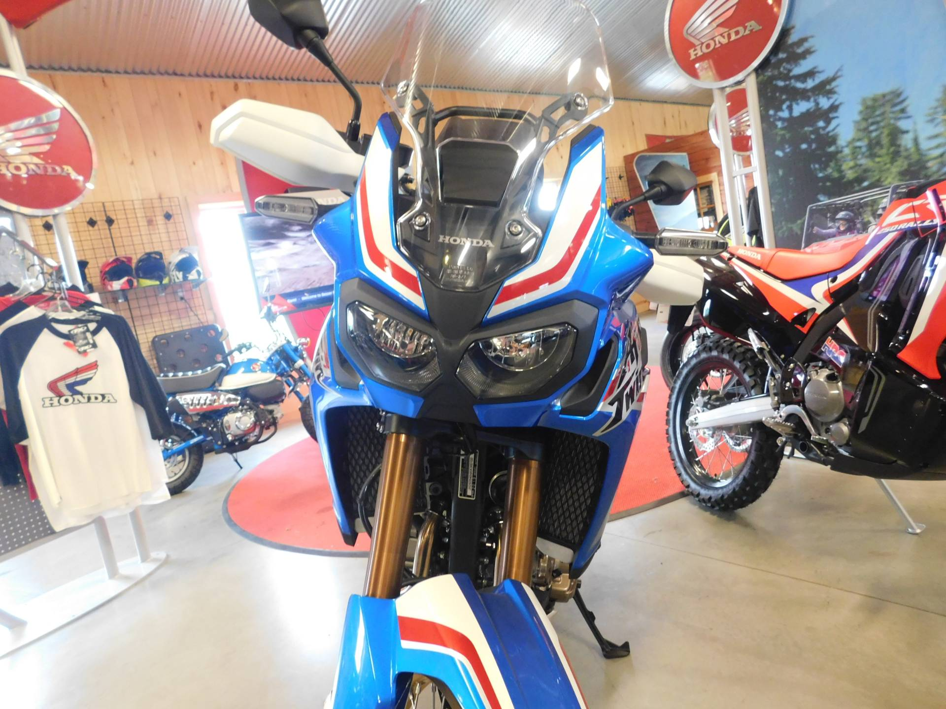2019 Honda Africa Twin in Sauk Rapids, Minnesota - Photo 6
