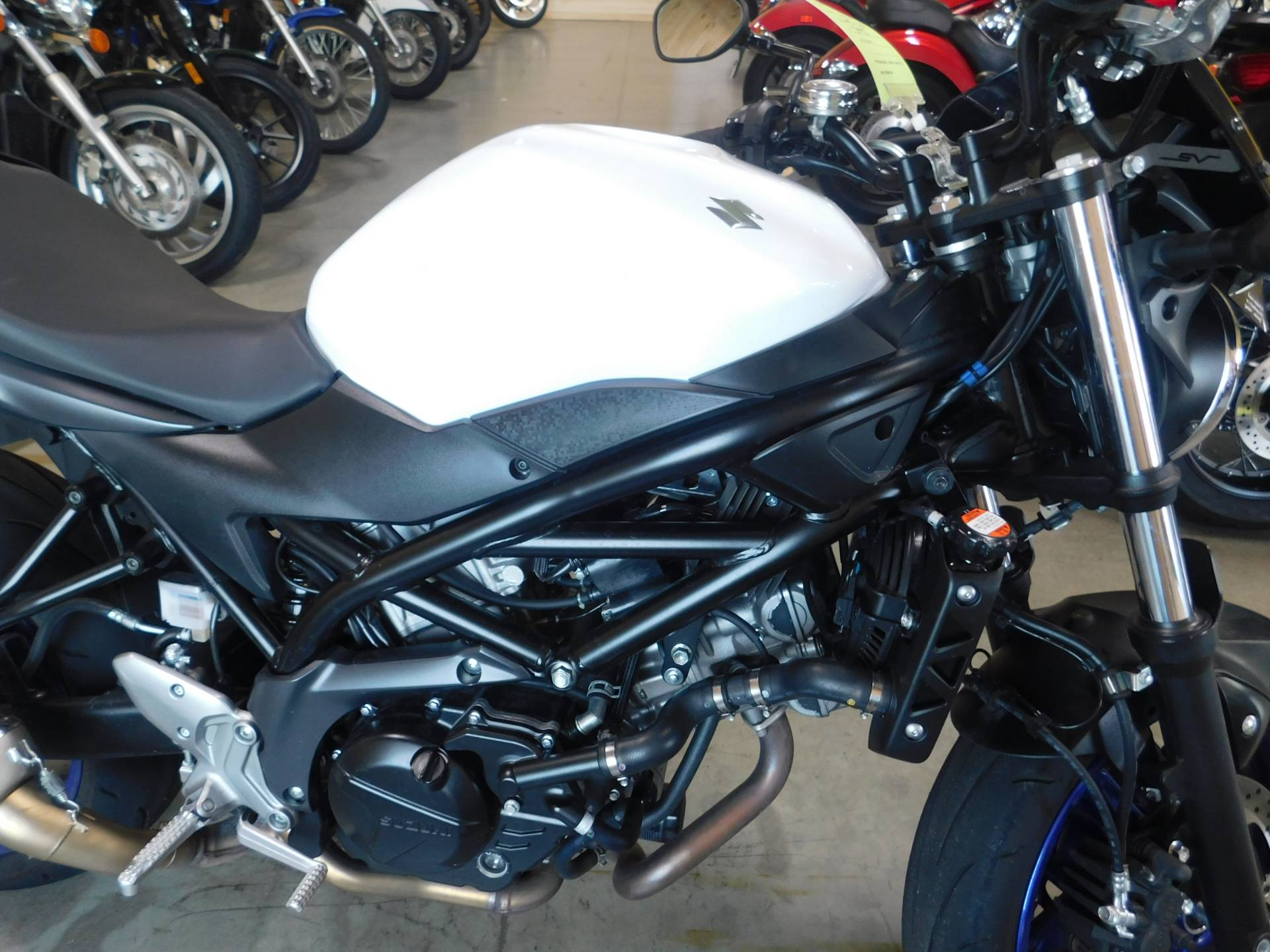 2017 Suzuki SV650 in Sauk Rapids, Minnesota - Photo 3