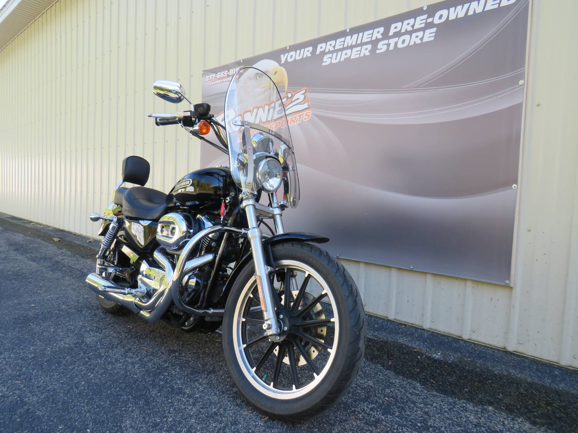 2007 Harley-Davidson Sportster® 1200 Low in Guilderland, New York - Photo 2