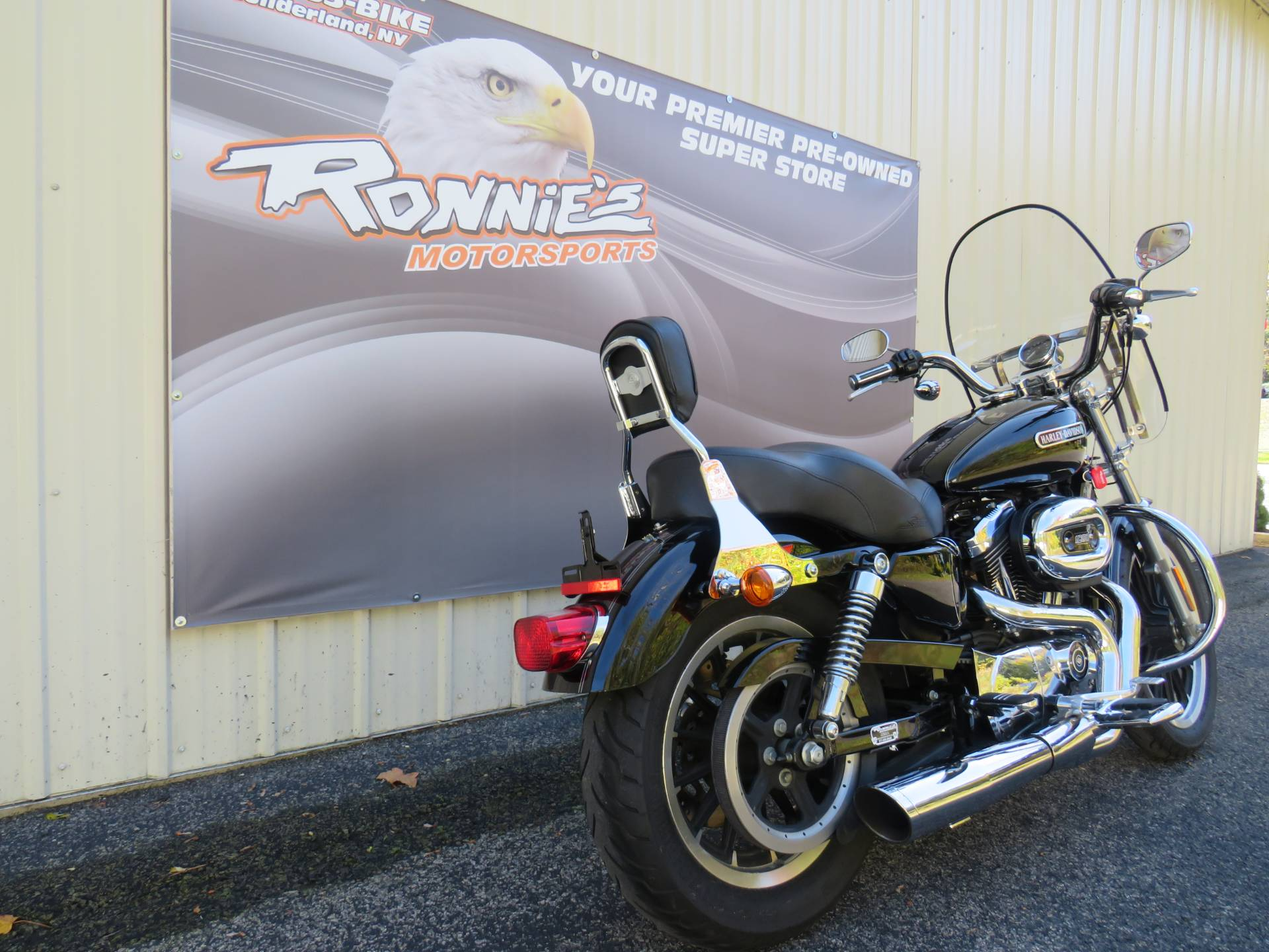 2007 Harley-Davidson Sportster® 1200 Low in Guilderland, New York - Photo 3