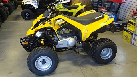 2019 Can-Am DS 250 in Bennington, Vermont