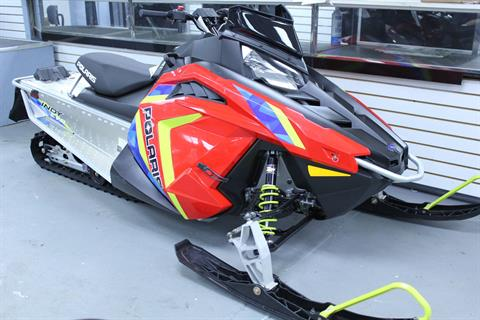 2019 Polaris INDY EVO in Pittsfield, Massachusetts
