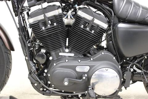 2019 Harley-Davidson Iron 883™ in Pittsfield, Massachusetts - Photo 13