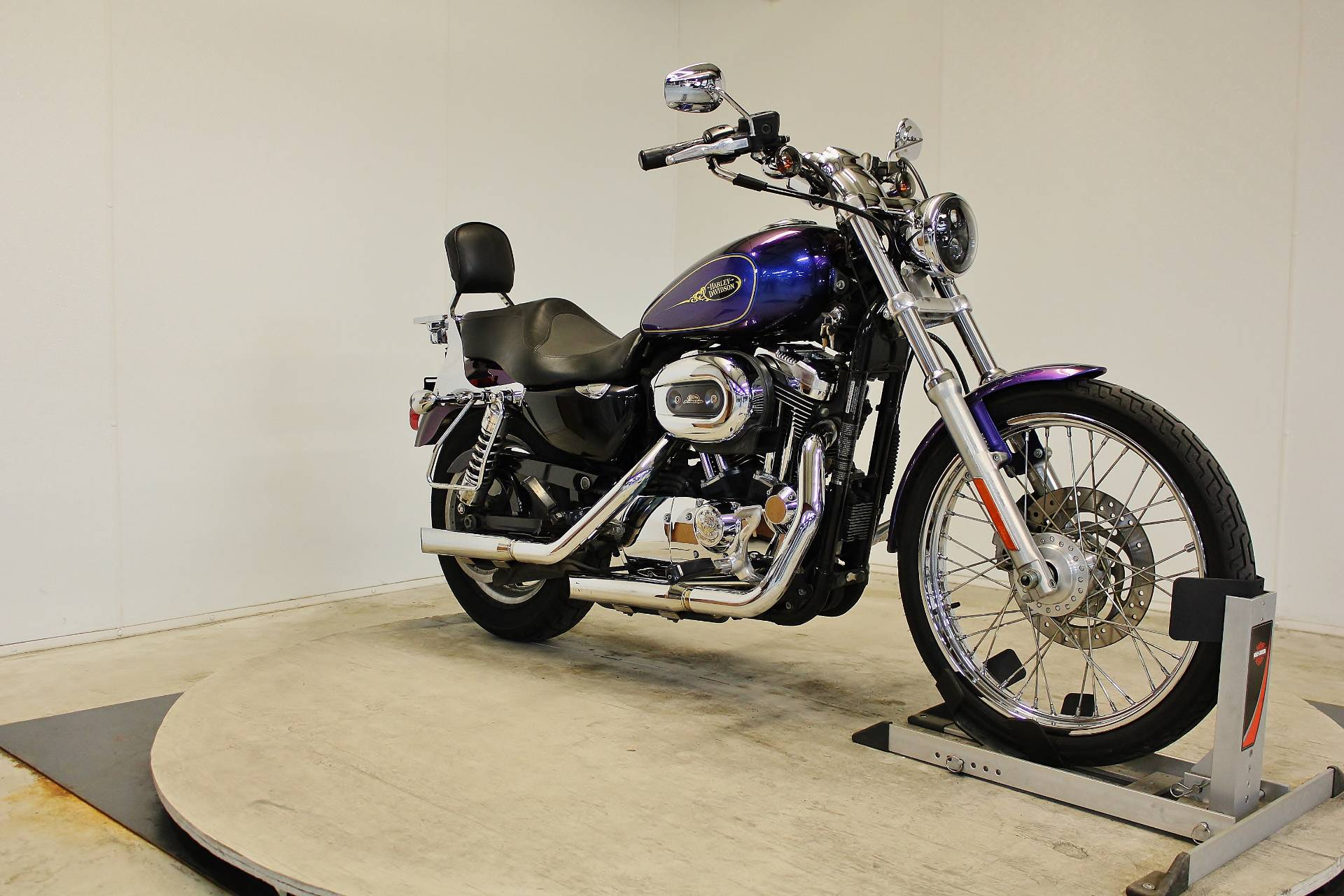 2009 Harley-Davidson Sportster® 1200 Custom in Pittsfield, Massachusetts