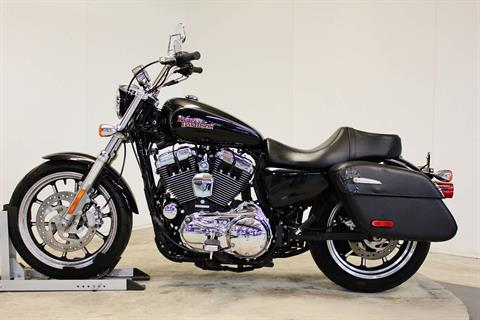2014 Harley-Davidson SuperLow® 1200T in Pittsfield, Massachusetts