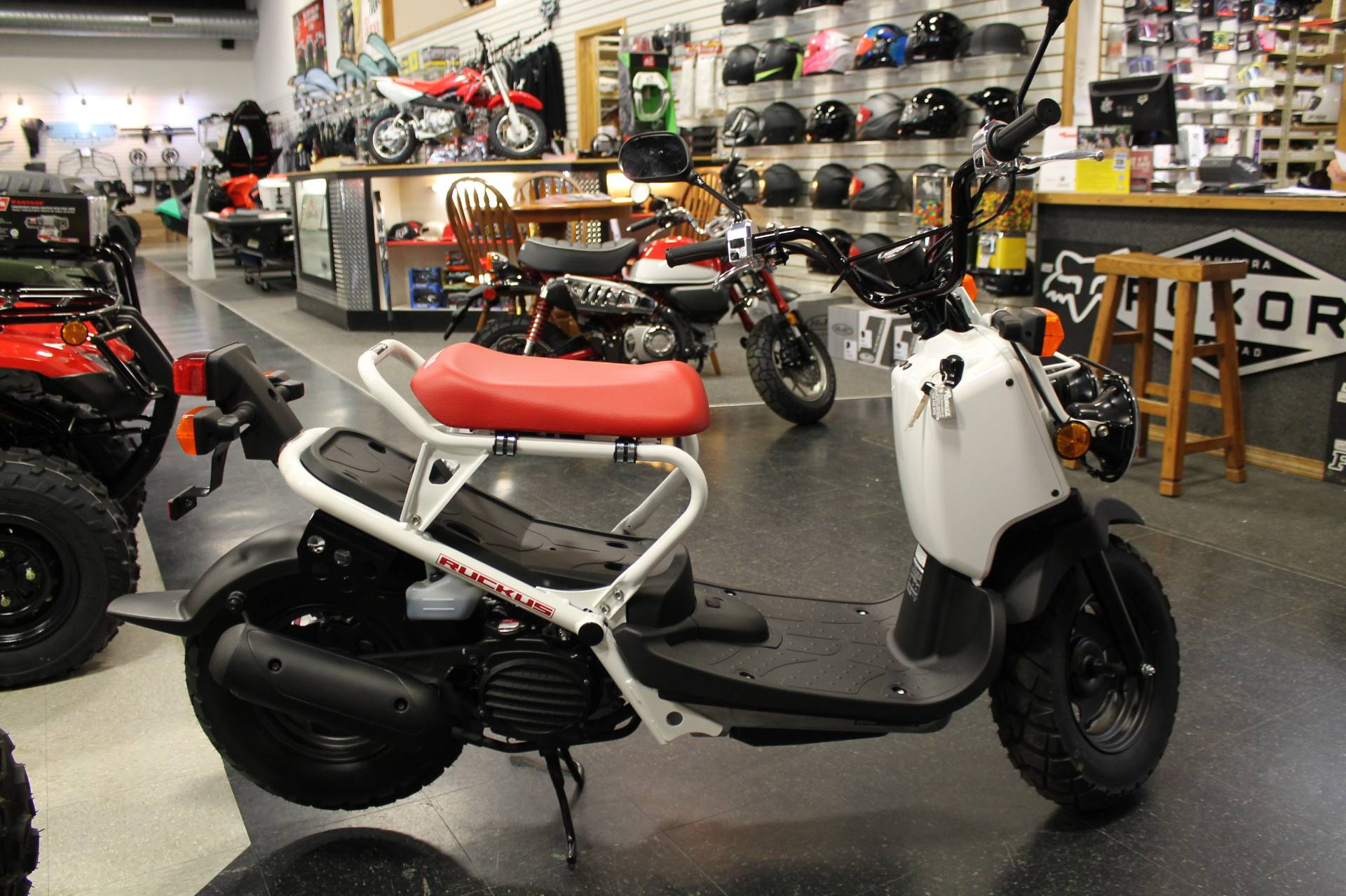 New 2019 Honda Ruckus Scooters in Adams, MA | Stock Number