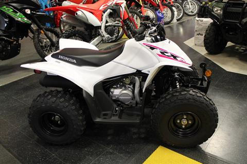 2019 Honda TRX90X in Adams, Massachusetts