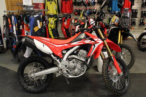 2019 Honda CRF250L in Adams, Massachusetts