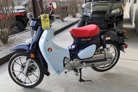 2019 Honda Super Cub C125 ABS in Adams, Massachusetts