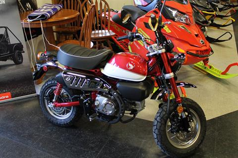 2019 Honda Monkey in Adams, Massachusetts