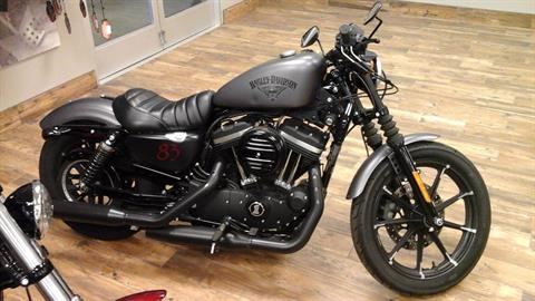 2016 Harley-Davidson Iron 883™ in Ozark, Missouri