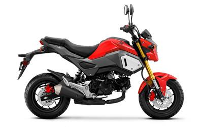 2019 Honda Grom125 in Everett, Pennsylvania