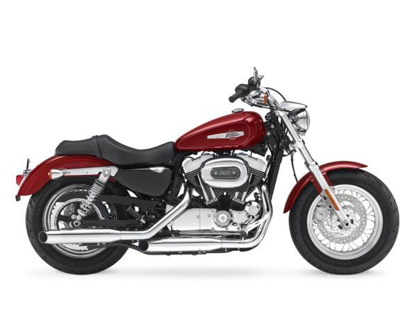 2017 Harley-Davidson 1200 Custom in Hico, West Virginia