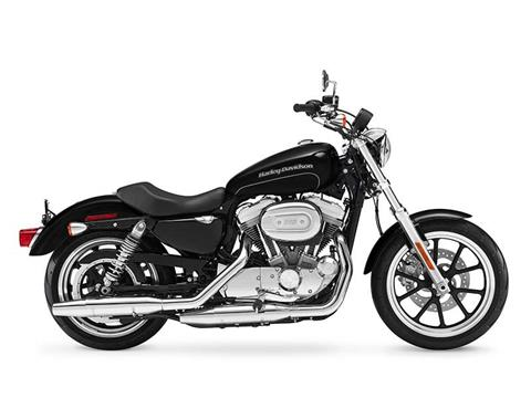 2016 Harley-Davidson SuperLow® in Hico, West Virginia