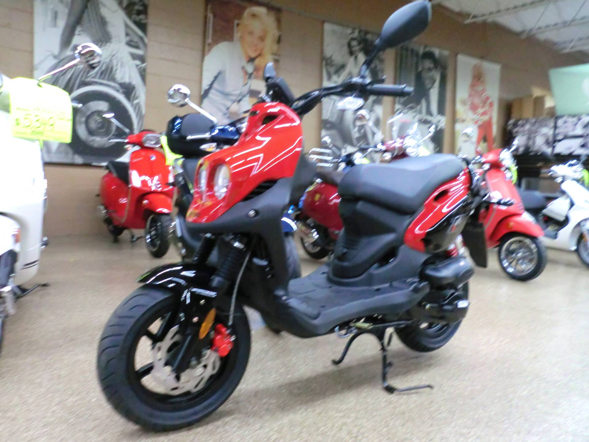 2019 Genuine Scooters Rattler 50 in Downers Grove, Illinois