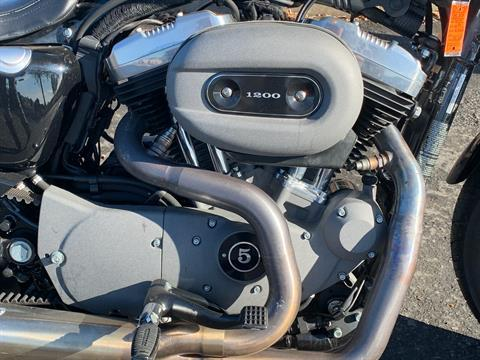 2009 Harley-Davidson Sportster® 1200 Nightster® in Vacaville, California - Photo 3
