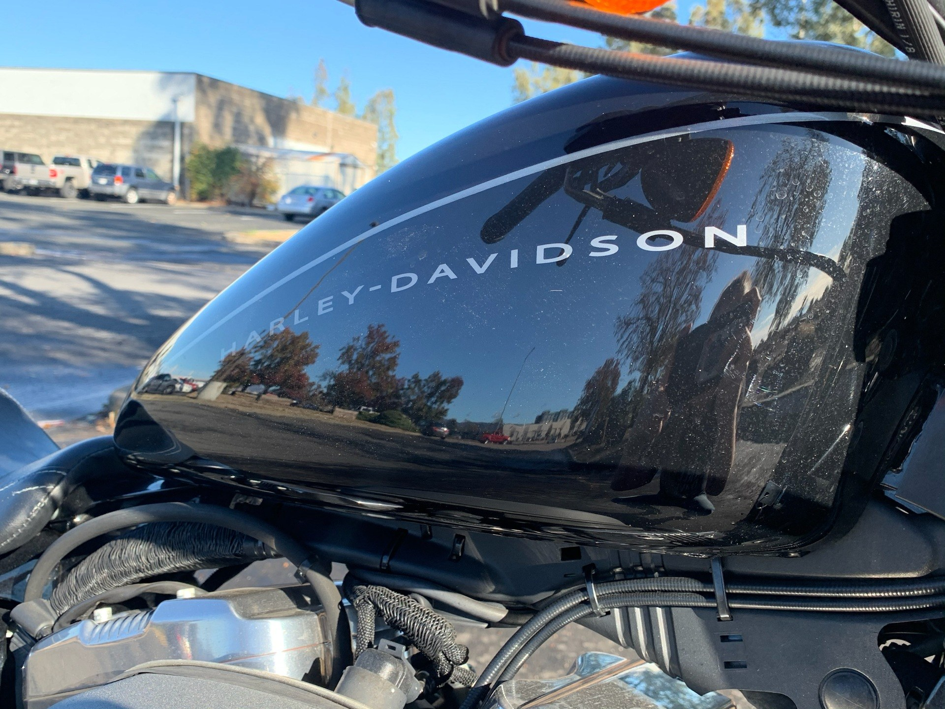 2009 Harley-Davidson Sportster® 1200 Nightster® in Vacaville, California - Photo 6