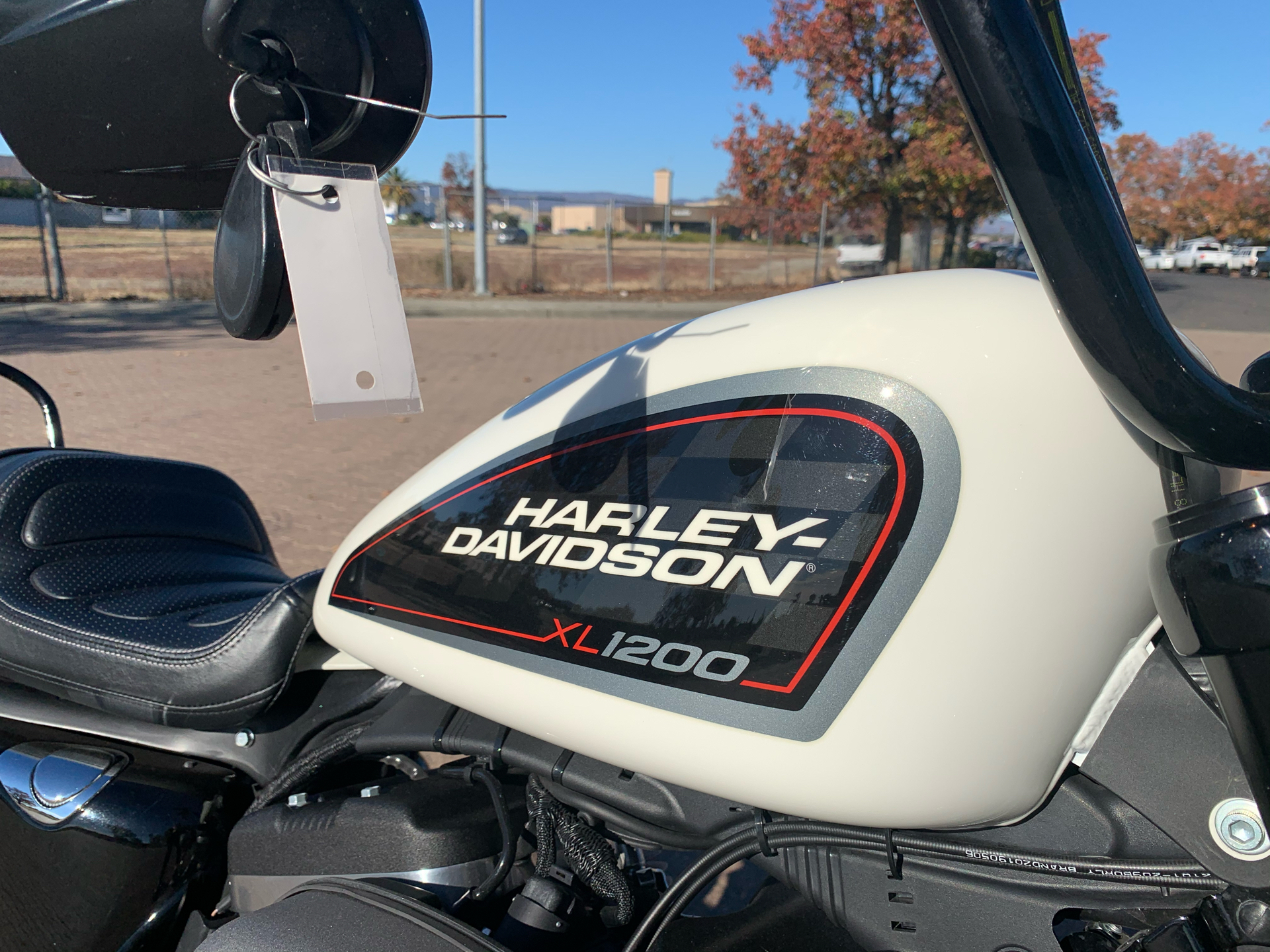 2019 Harley-Davidson Roadster™ in Vacaville, California - Photo 12
