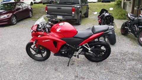 2013 Honda CBR250 in Harmony, Pennsylvania