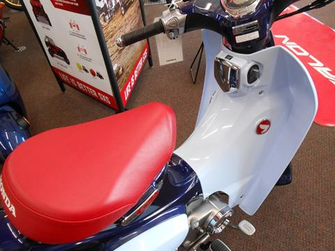 2019 Honda Super Cub C125 ABS in Rice Lake, Wisconsin - Photo 4