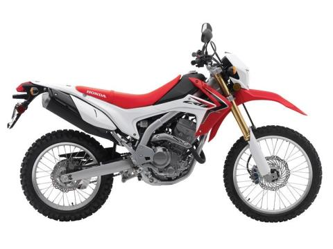 2014 Honda CRF®250L in Hicksville, New York - Photo 2