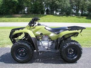 2016 Honda FourTrax Recon ES Red (TRX250TE) in Lapeer, Michigan - Photo 6